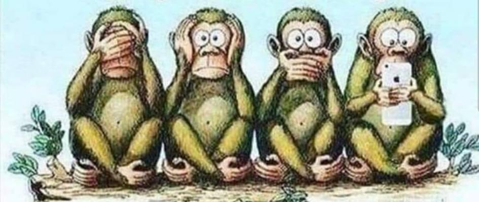 4-majmuna