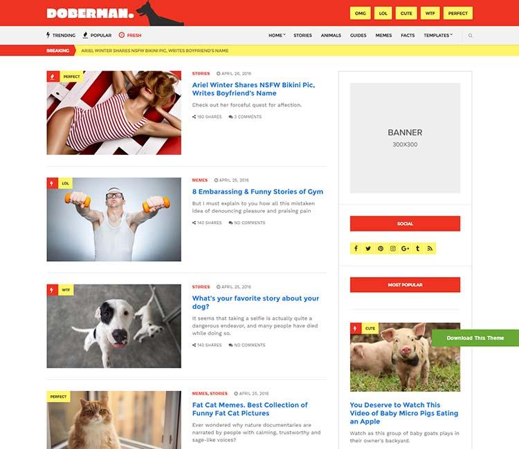 Doberman-–-A-Viral-WordPress-Theme